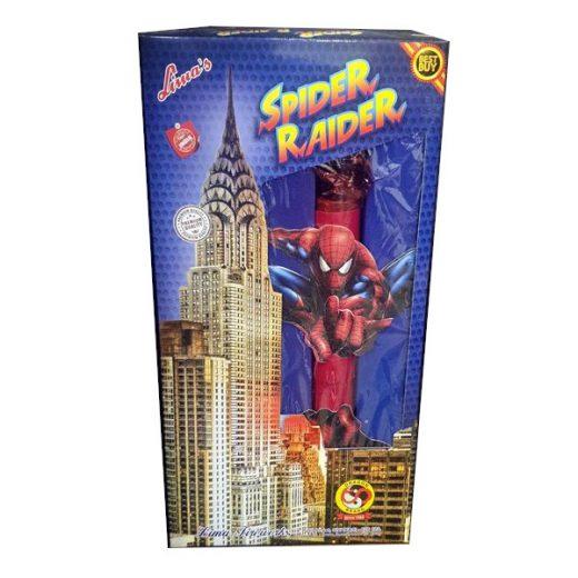 Spider Raider